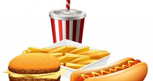 fast food set 1308 27150